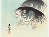 zeshin-shibata-1807-1891-carp